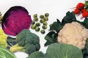 Los mejores vegetales para fortalecer y curar el h gado - Mejores alimentos para el higado ...