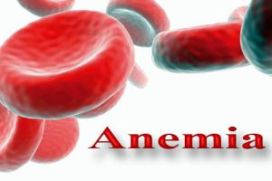 Alimentos saludables contra la anemia - Anemia alimentos recomendados ...