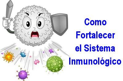 Secretos para fortalecer el sistema inmune con la alimentaci n - Alimentos sistema inmunologico ...