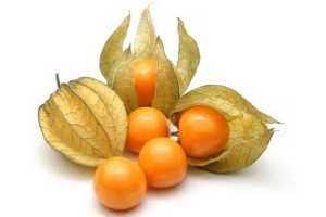 dieta para acido urico y colesterol yema y acido urico enfermedad el acido urico